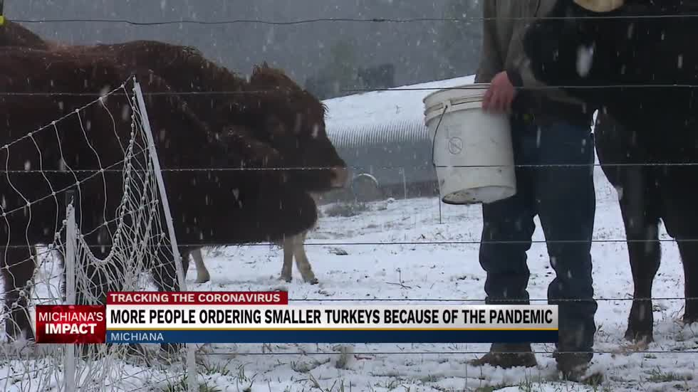 People ordering smaller turkeys for this year's Thanksgiving